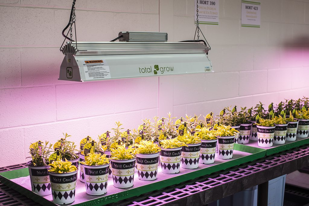 SIU College of Agricultural Sciences LED Room