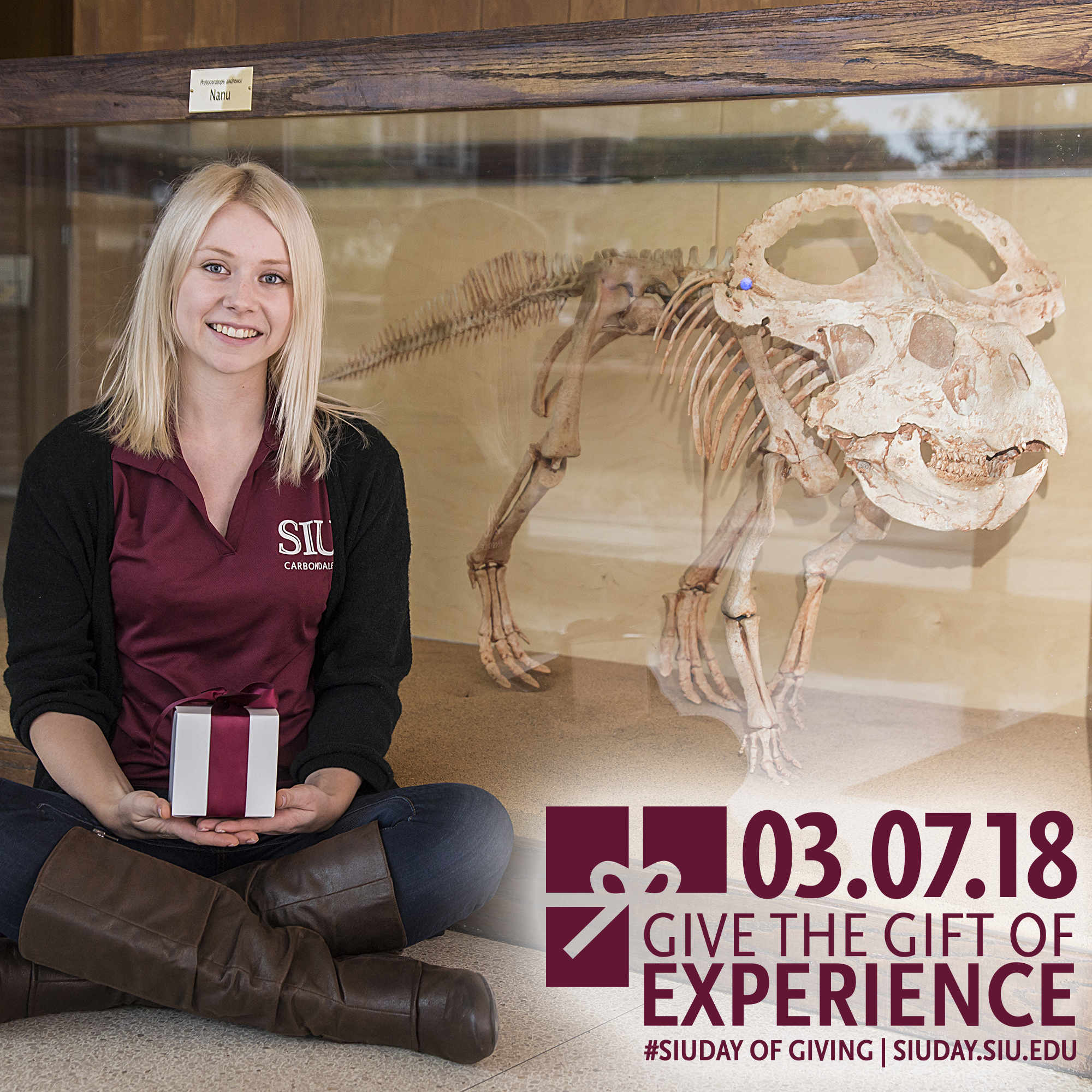 SIU Day of Giving 2018: Give the Gift of Experience – Jordan Knuth