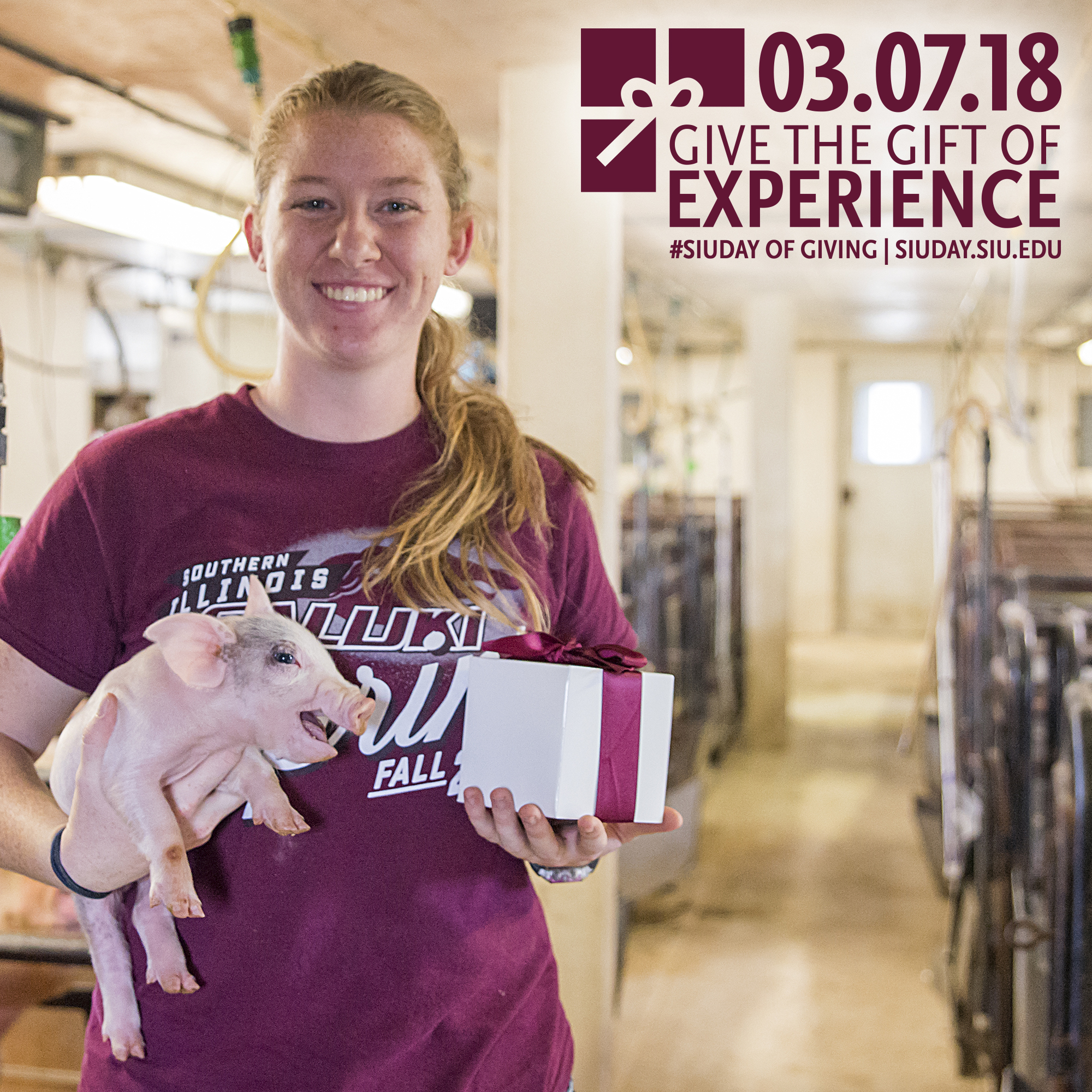 SIU Day of Giving 2018: Give the Gift of Experience – Rebecca Harris